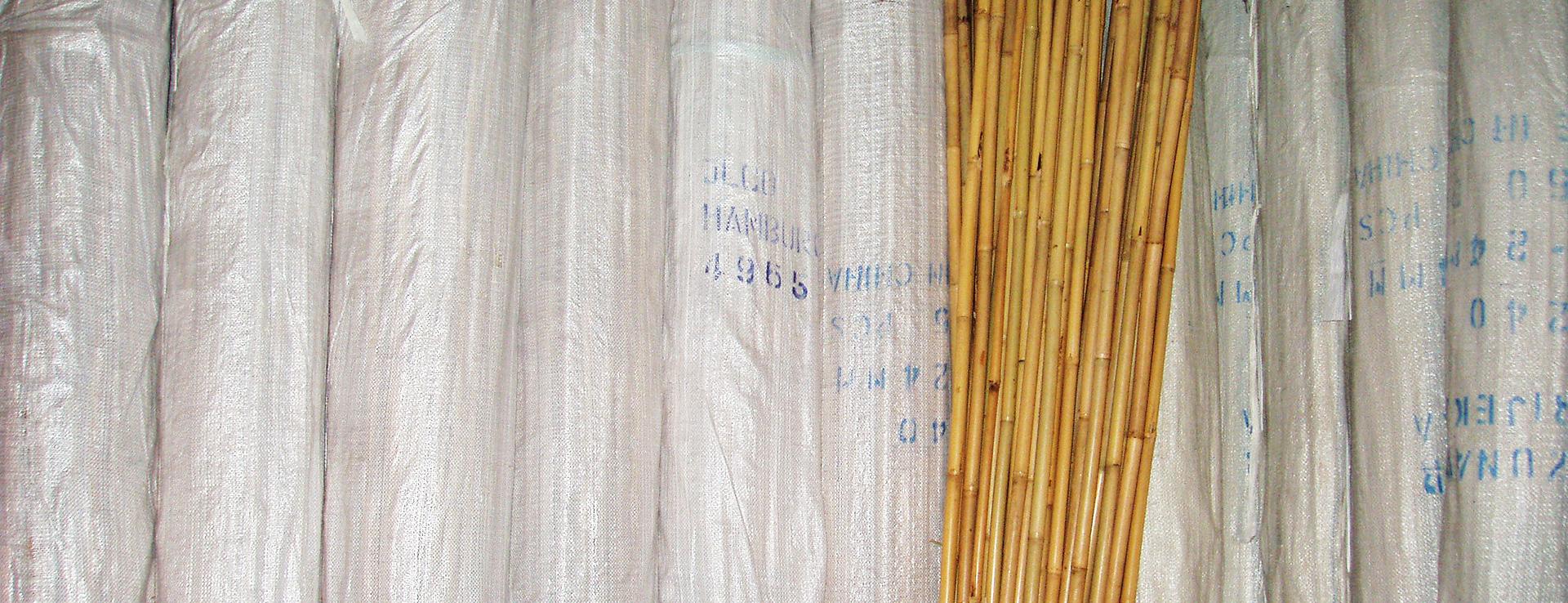 Bambus Žunar